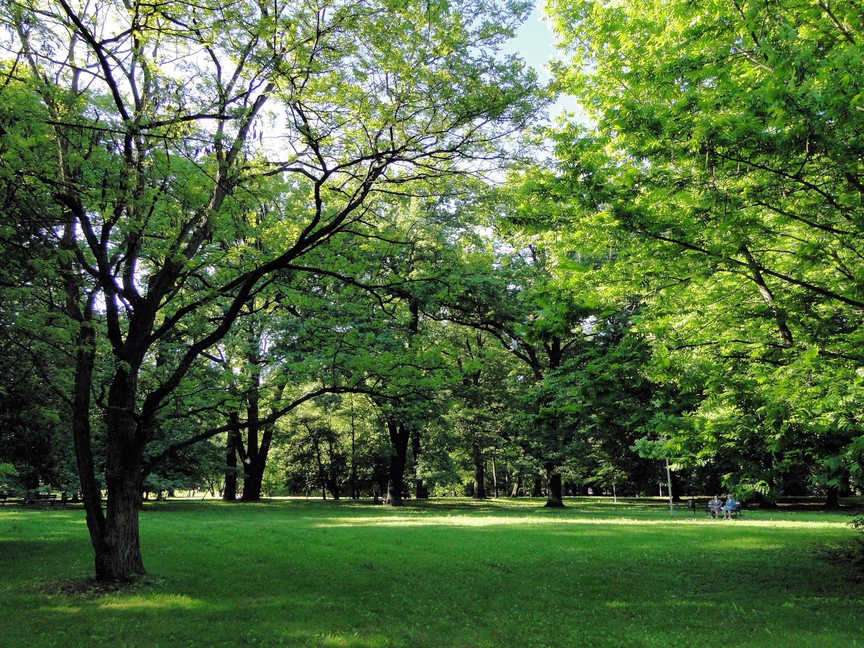 Park Żeromskiego - Szczecin